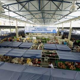 Mercado Municipal Periperi