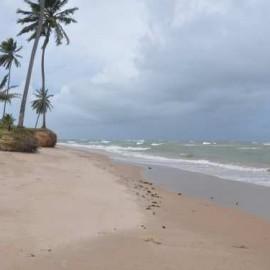praia de itacimirim bahia