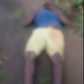 homem morto no mangueiral 012