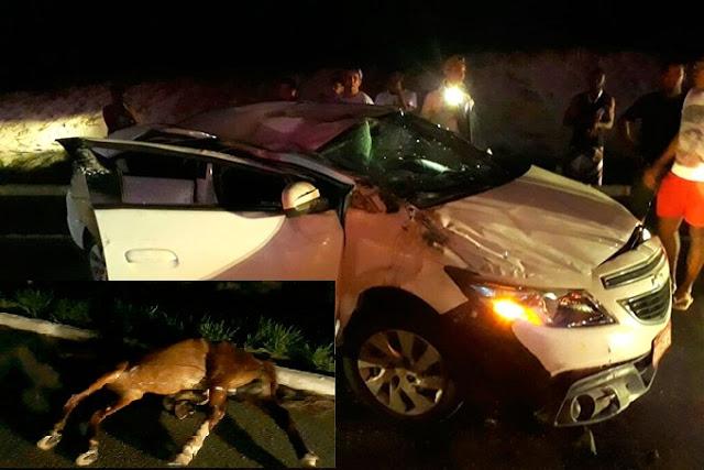 Acidente: cavalo na pista deixa três pessoas feridas em Mata de São João