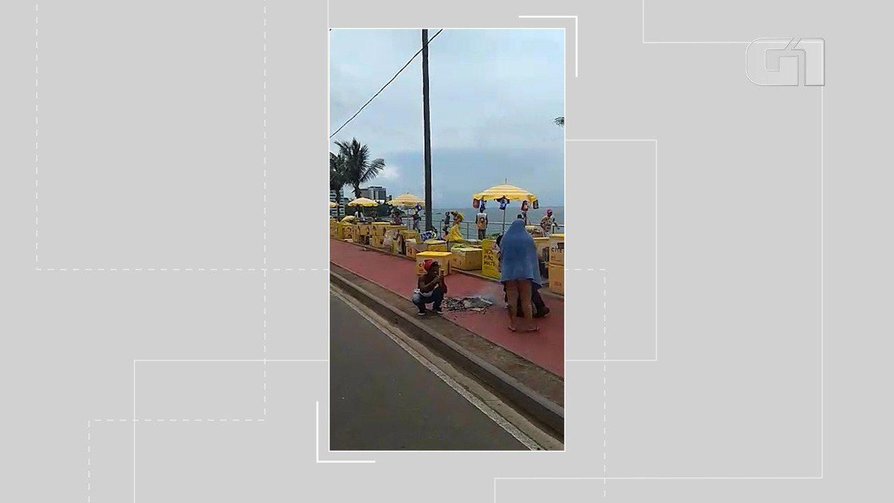 Ataque de abelhas assusta foliões no circuito Dodô, em Salvador
