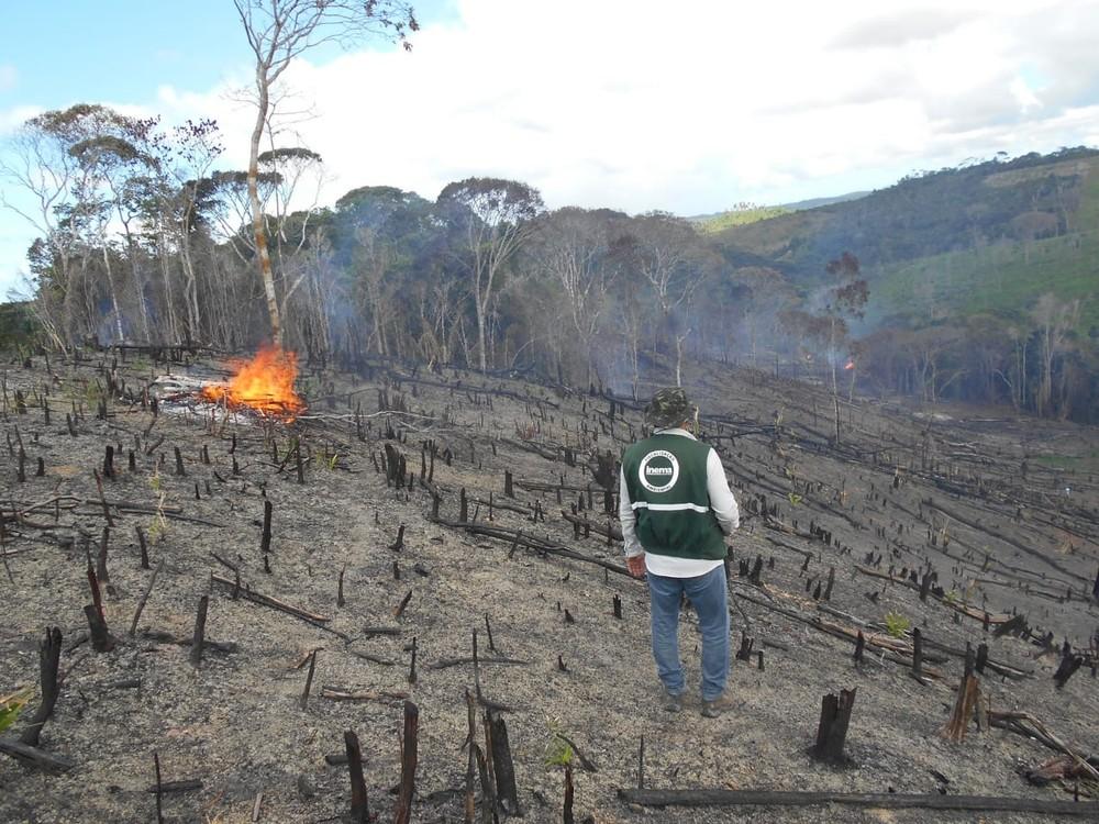 Operação do Inema identifica e interdita áreas de desmatamento no Litoral Norte