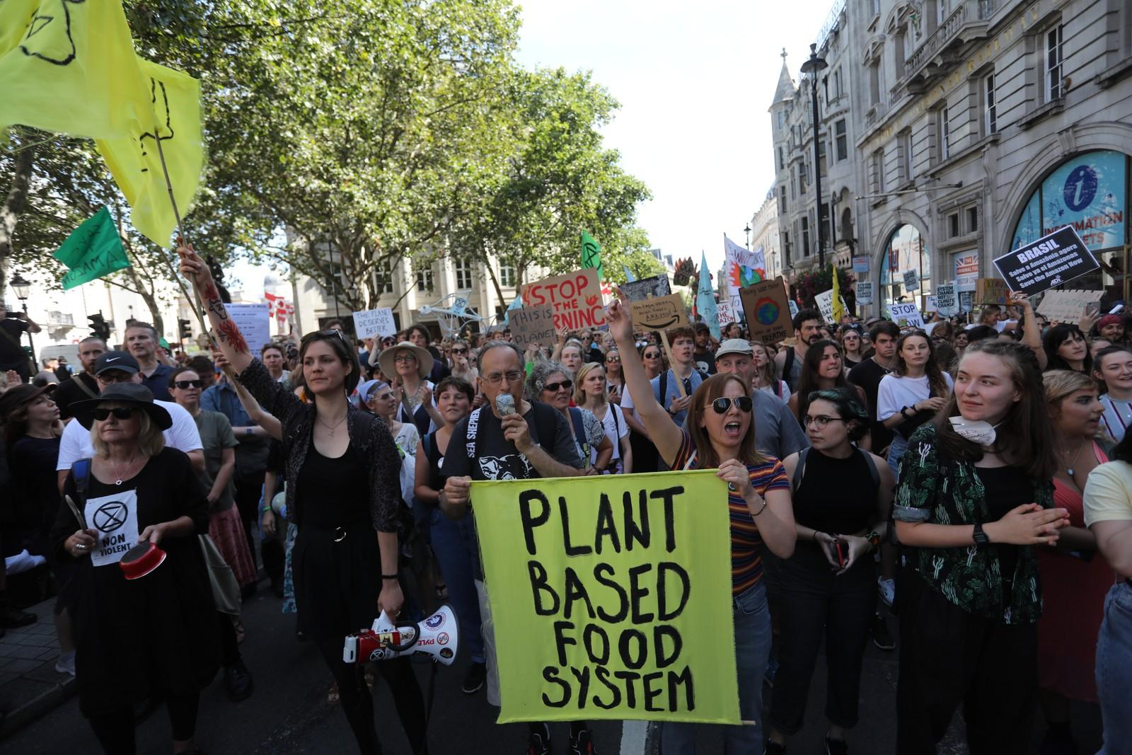 Preservação da Amazônia: Manifestantes fazem protestos em embaixadas brasileiras pelo mundo