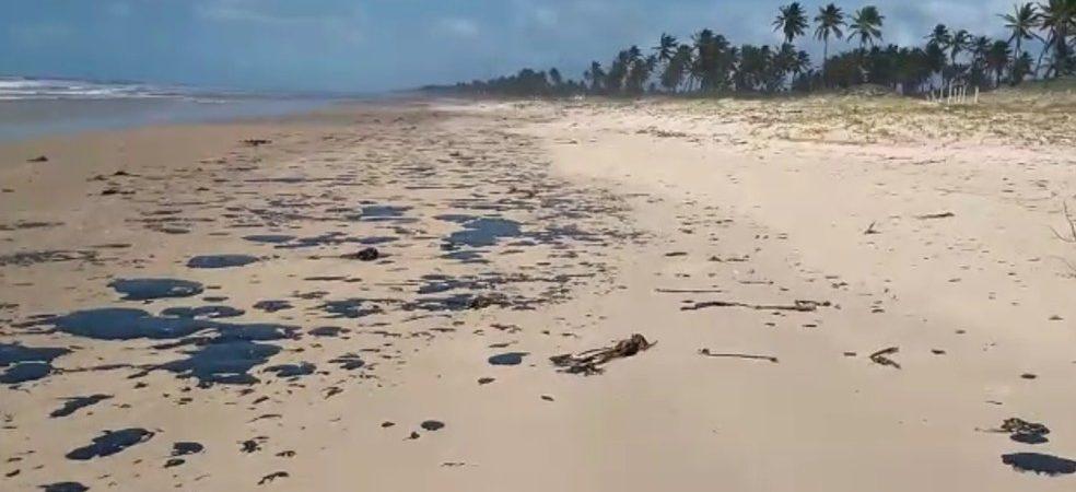 Secretário fala das ações adotadas por Camaçari sobre manchas de óleo nas praias