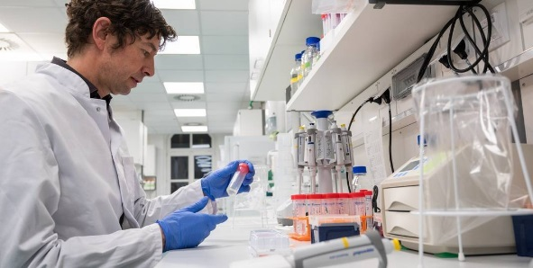 Cientistas desvendam estrutura do novo coronavírus; informação pode ajudar na fabricação de vacinas