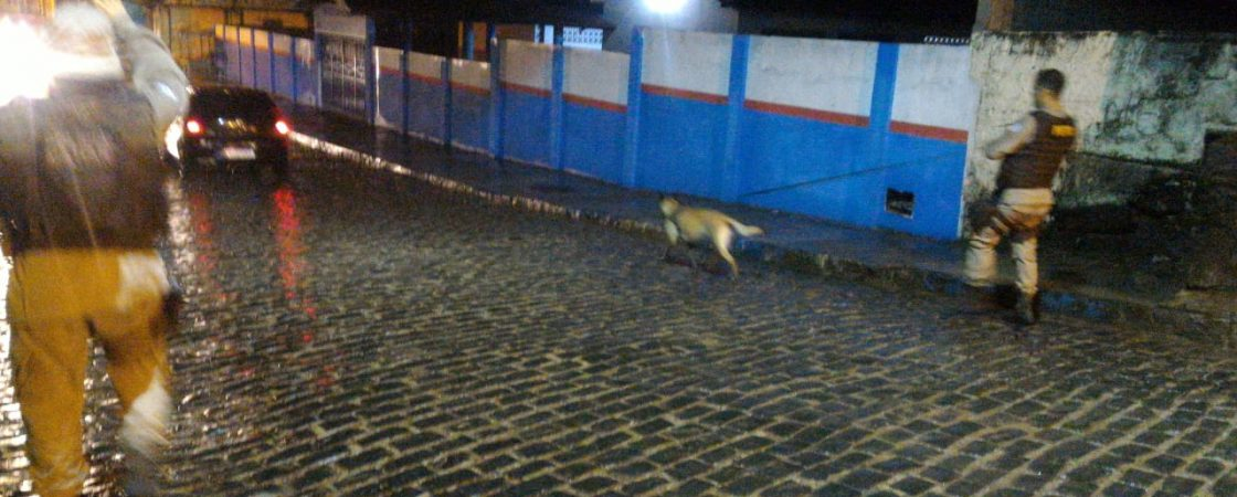 Suspeito de latrocínio é localizado com auxílio da cadela farejadora