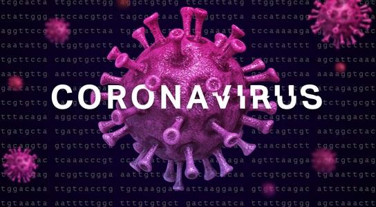 Bahia totaliza nesta quarta (3), 762 óbitos e 22.451 casos do novo coronavírus