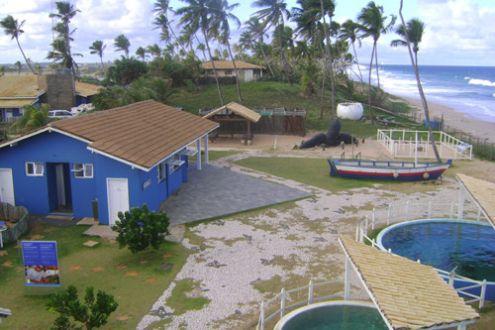 Secretária de Turismo de Camaçari diz que base do Tamar permanece em Arembepe